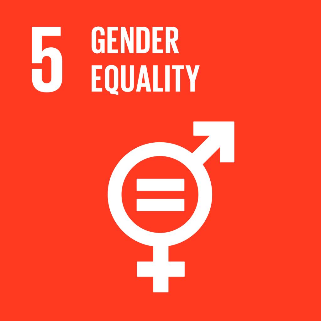 Global Goals Number 5 - Gender Equality - Colour logo
